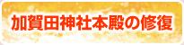 天野山文化遺産研究所のイベントブログ